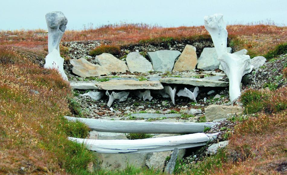 Die Thule waren die Vorläufer der heutigen Inuit-Kulturen und lebten an den Küstengebieten der Arktis vor allem vom Walfang. Ihren Ursprung konnten die Forscher jetzt im Bereich von Point Barrow zurückverfolgen. Bild: Wikipedia / Timkal